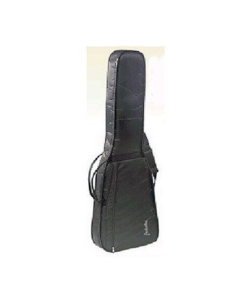 Bass Guitar bag with backpack - Protection