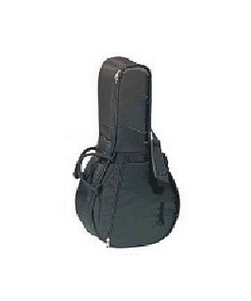 Lute bag - Protection